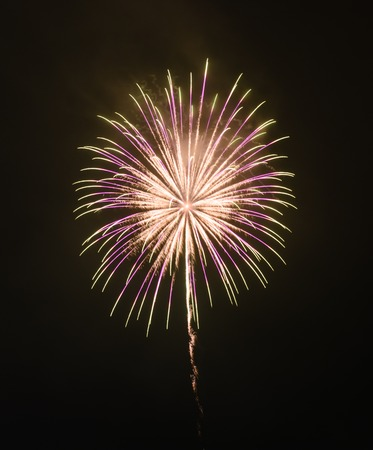 pyrotechnics: Colorful fireworks in the night sky