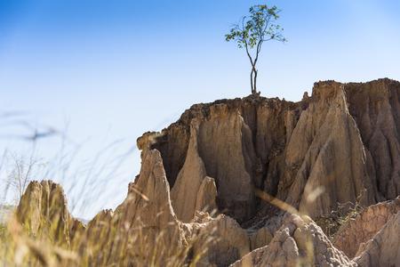 avaroa: Soil erosion (roadside slope). Roadside hillside