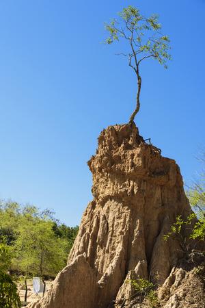 soil erosion: Soil erosion