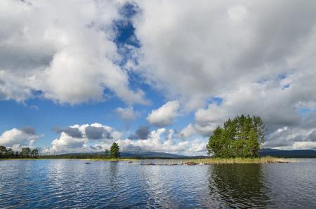 Wooded shore of a large lake. Forests along the coast. Kola Peninsula
