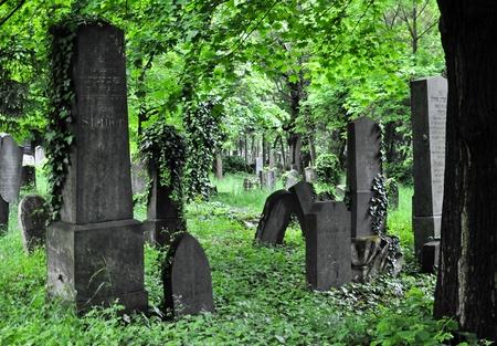 verouderende grafstenen bij een afvallend gedeelte van de centrale begraafplaats van Wenen Stockfoto