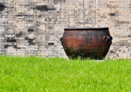withering: rusty iron cauldron in a lush meadow in front of a brick wall