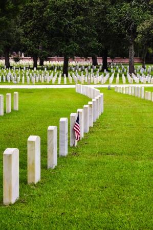 memorial cross: hileras de l�pidas de soldados en un cementerio nacional