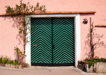 green wooden door in a pink wall with vines photo