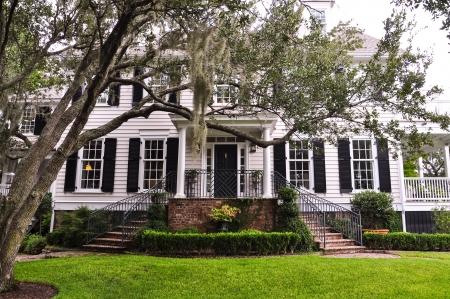 exteriores: mansión sureña con el árbol chokeweed