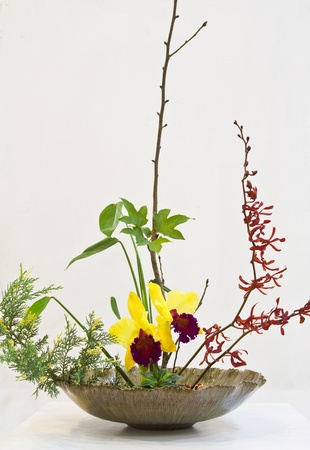 IKEBANA : japanese flower arrangement with Thai flower by Chiang Mai ikebana club in The international Horticultural Exposition Royal Flora Ratchaphruek 2011,Chiang Mai, Thailand Stock Photo - 12256182