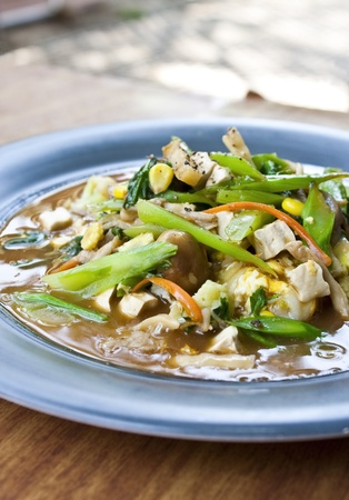 vegetarian thai food   Guaitiao Rad Na--vegetarian stired noodle in creamy gravy sauce with tofu,mushroom and vegetable