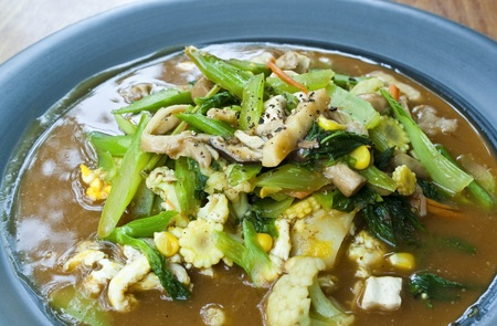 vegetarian thai food   Guaitiao Rad Na--vegetarian stirred noodle in creamy gravy sauce with tofu,mushroom and vegetable  Stock Photo