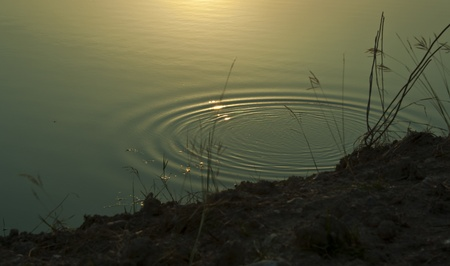 water ripple near side with sun light in a lake