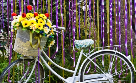 decorative old white painted  bicycle with basket of colorful flower Stock Photo