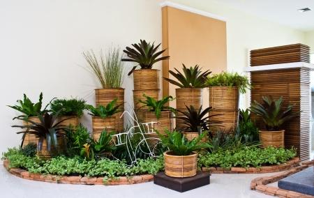 indoor garden for room corner decoration