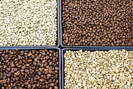 roasted and green coffee bean Stock Photo
