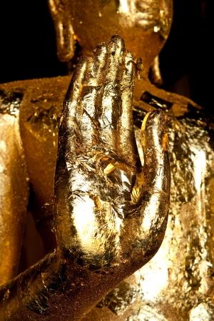 hand of buddha image Stock Photo - 15656567
