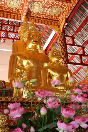 buddha image in Suan Dok temple s Vihara at Chiang Mai, Thailand Stock Photo - 16644497