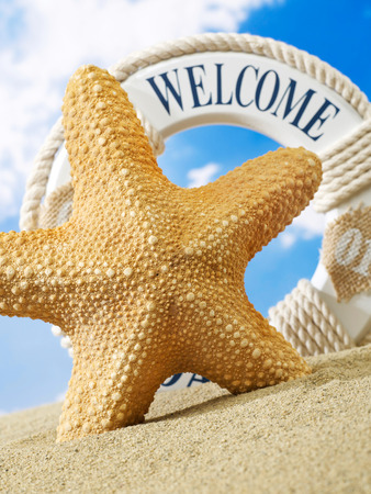 welcome sign: Starfish and welcome sign on beach
