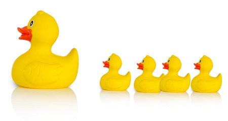 rubber duck: Mother rubber duck leading several rubber ducklings