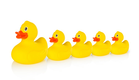 leading: Mother rubber duck leading several rubber ducklings