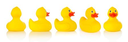 pato de hule: Patos de goma