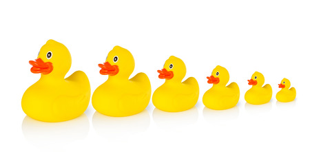 leading education: Descending rubber ducks in a row
