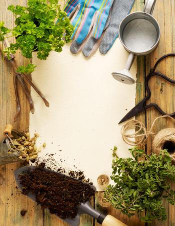 gardening equipment: Gardening equipment Stock Photo