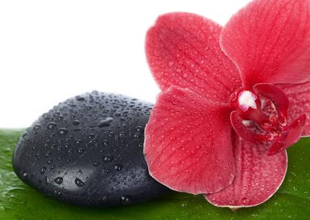lastone therapy: Zen stone closeup