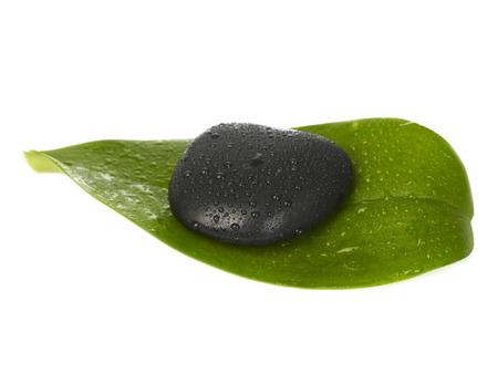 lastone therapy: Zen stone and leaf