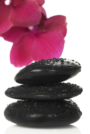 lastone therapy: Zen stones and orchid