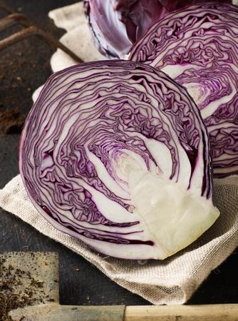 Red cabbage close-up