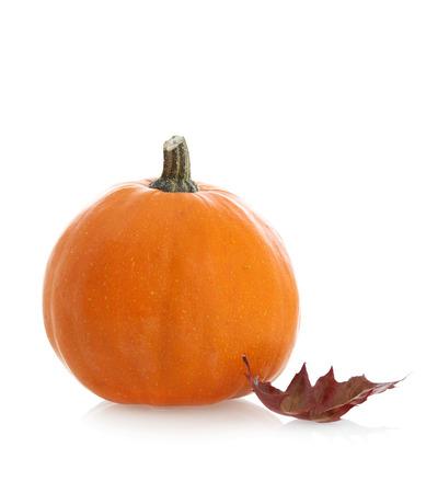 Pumpkin and leaf