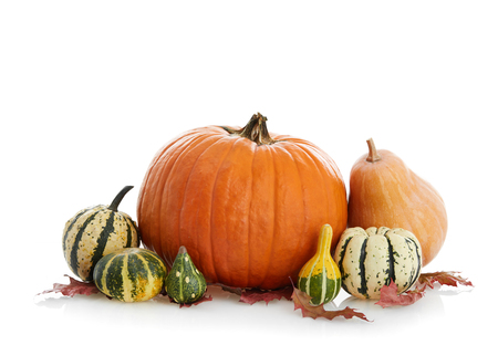 Pumpkins isolated on white Stock Photo