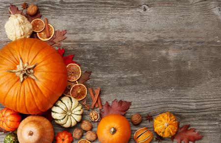 Fall pumpking arrangement Banco de Imagens
