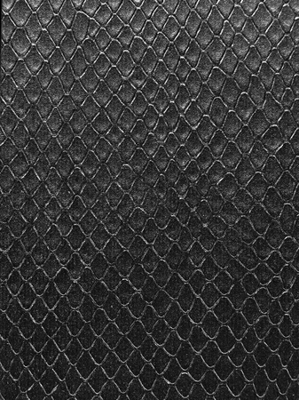 Snake leather texture 写真素材