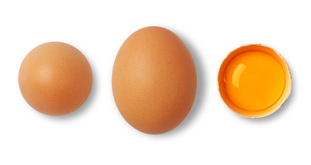 Brown egg and yolk on white 스톡 콘텐츠