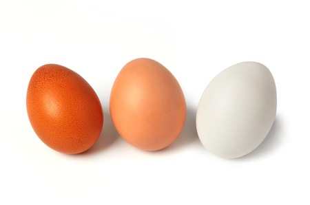 Different types of eggs  isolated on white 스톡 콘텐츠