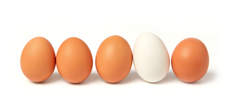 White egg between brown eggs 스톡 콘텐츠