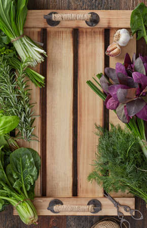 Herbs close-up detail