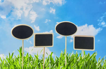 Blank placards in the grass 免版税图像