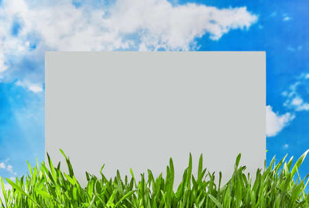 Blank sign in the grass 免版税图像