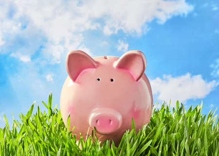 Piggy bank in the grass 免版税图像