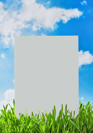 Blank white sign in the grass 免版税图像