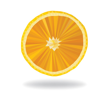 slice of orange fruit polygonal. Ilustrace