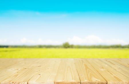 landscape of spring and table. Reklamní fotografie