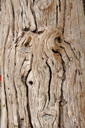 menselijk gezicht houten textuur oppervlak