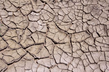 Clay dry soil in summer photo