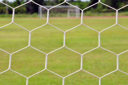 behind the net photo