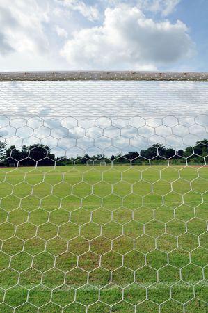 behind goal