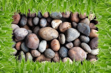 Grass and stone background photo