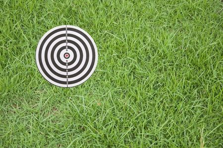 Target on green grass photo