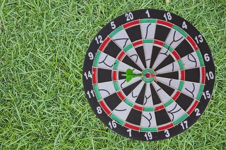 Dart Board on green grass background photo
