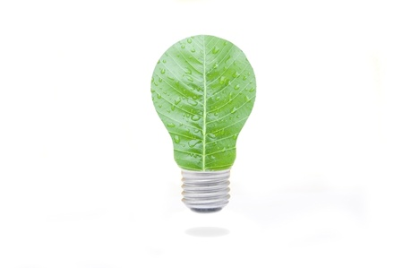 green leaf lamp in white isolate background photo
